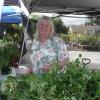 Elsie Manning the plant sale table.